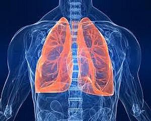 Egészségünkről a Vásárhelyi Hírekben - Krónikus légúti betegség