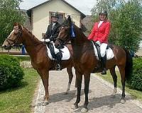 Hírek a vásárhelyi lovassport világából