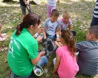 Integráció és tolerancia - Egy tábor amit érdemes támogatni