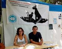 Ismét Székkutason jártak az állatvédők