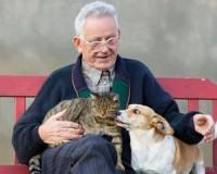 Kutyás nyugdíjasok tovább élnek