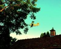 Csongrád Megyében is kezdődik a szúnyogirtás