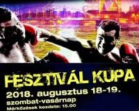 A Boxing Gym Vásárhely is ott lesz a szegedi Fesztivál Kupán