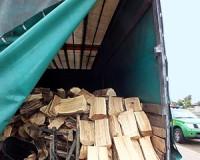 Tűzifa csalás vásárhelyi károsultakkal