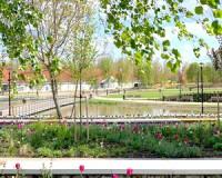 Átadják Vásárhely új tavas pihenőparkját