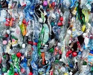 Műanyagmentes július Vásárhelyen is