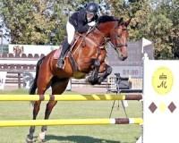 A nyílttéri szezon vásárhelyi lovassikerei