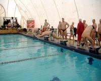 Vásárhelyi szenior úszó sikerek