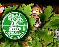 Tavaszi Zoosuli indul a vadasparkban