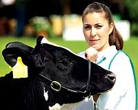 Előny ha patyolattiszta a tehénpopsi