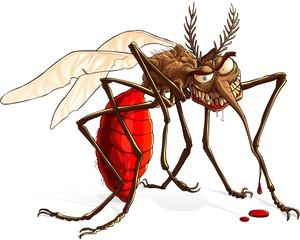 A szúnyogcsípésről még több