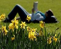 Tavaszi méregtelenítés